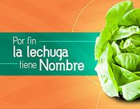 Brand Image: Naturalia