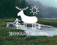 Логотип и фирстиль для экофестиваля