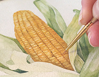 corn watercolor