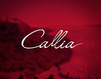 El Plan Perfecto Website / Bodegas Callia