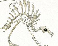 Bonekeeper 2