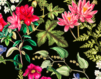 Botanical Floral Pattern
