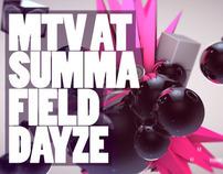MTV festival packaging