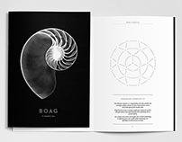 Boag Financial