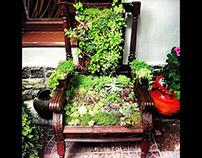 Green chair, living chair