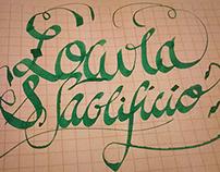 Lettering & Calligraffitti