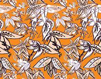 dibujando flores 2015