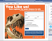 Facebook Application: Form Registration Promo Campaign