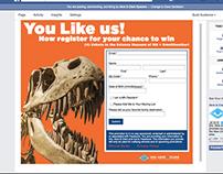 Facebook Application: Form Registration Promo Campaign