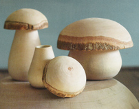 Mushroom Stash Boxes