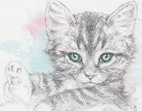 Pet Portraiture / Promo Flyer Design 2014