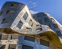 Frank Gehry Brain Building