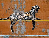 Cheetah Style