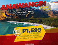 DLC Travel and Tours Promo FB Poster