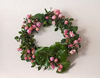 Florist Portobello Rose