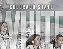 White Out Volleyball Poster
