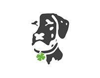 Dublin Dog E-Commerce Platform