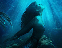 Mermaid Composite