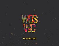 WOS INC teaser