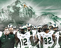 Colorado State Football Wall Mural