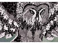 collage owl - kolaż sowa - texture drawing
