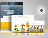 One page Web Design