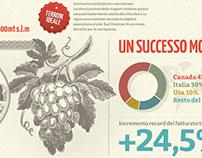 Umberto Cesari Wines | Infographic