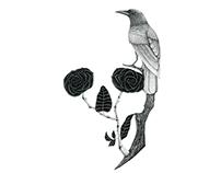 Pássaro, rosas / Bird roses