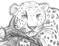 free animal drawings
