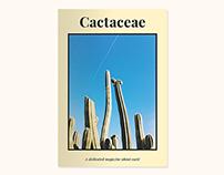 Cactaceae — Magazine