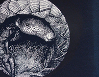 Pangolin Moon