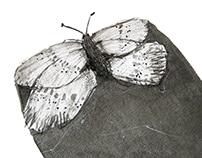 Illustrations for Inktober challange