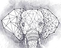Elephant_../