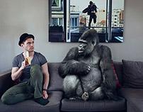 Gorillo's story