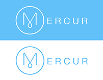 Mercur - Project Management for Scrum Teams