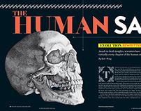 Human Skull for Scientific American Magazine