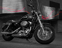 Infografica Harley Davidson
