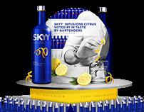 Skyy Vodka POS Display