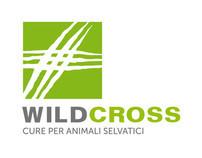 Wild Cross
