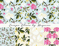 Campos eliseos Pattern design