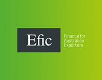 Efic Responsive Website