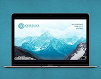 Презентация доклада для компании «Corplex»