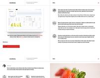 web designer portfolio pt2