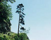 Rocher de l'Orzier, Chartreuse