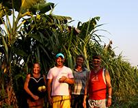 Rede Maniva de Agroecologia
