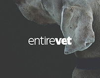 entirevet - Dashboard For Veterinary