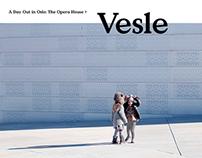Vesle Universe. Web.