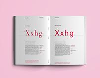 Mastering Type Book
