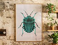 Turquoise Bug