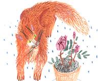 book illustrations mix